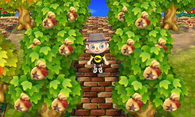 Money Trees As Saplings The Bell Tree Animal Crossing Forums